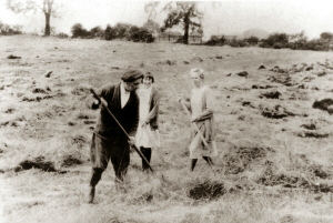 A lovely image of working life at hay making time in the fields at Riley (Rylah Farm). This image shows Arthur Atkinson and his wife Lucy. Their daughter Marjorie (Madge) is closest to her father.