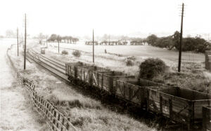 This image was taken on the 4 September 1955 and shows the Palterton and Sutton railway line from the bridge over Carr Lane, looking south towards Glapwell and Ramcroft Collieries.  The empty wagons are in the sidings by the main single track that carried coal wagons to and from these two pits.  To the right of these wagons where the bush and telegraph pole are located was the site of the station and platform of the former passenger line.  This scene has long since disappeared.