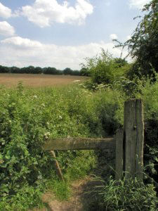 A modern (2004) image showing part of footpath leading from the edge of Babbington village to the Strelley Park area.